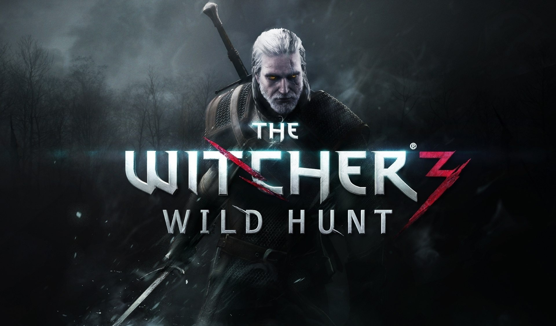 thewitcher3back